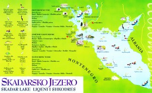 Skadarsko Lake map
